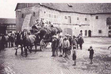 Ernte (Burgplatz)